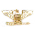 Insignia Collar Brass