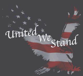 511 Tactical 41006AK 5.11 Tactical Men'S United We Stand T-Shirt