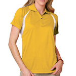 Ladies Wicking Raglan Sleeve Polo