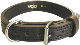 "Boston Leather 8310-1 1 1/4"" Collar"