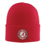 Carhartt 100887 Men's Alabama Acrylic Watch Hat 2