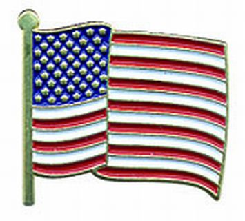 Hero's Pride 9098 U.S. Flag Pin-wavy
