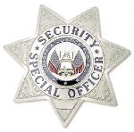 Hamburger Woolen Company Inc Hamburger Woolen Company Inc 7114 7 Point Star - Security Special Officer - Breast Badge