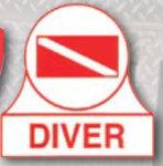 Premier Emblem D2029 Decal Diver