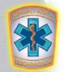 Premier Emblem E1634 4 Staff Of Life - Reflective