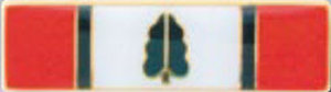 Premier Emblem P4729 Meritorious Conduct