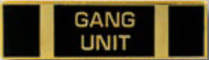 Premier Emblem P4778 GANG UNIT - 1 3/8 x 3/8