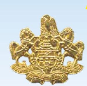 Premier Emblem P4948 Penna Coat of Arms Med