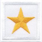 Premier Emblem PE1087 1 1/2 x 1 1/2 Chief
