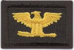 Premier Emblem PE1176 1 x 1 1/2 Colonel - Mini