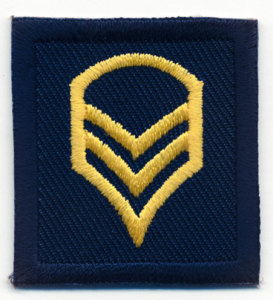 Premier Emblem PE990 1 1/2 x 1 3/8 Staff Sergeant