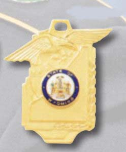 Premier Emblem PM-21 Commendation Medal PM-21