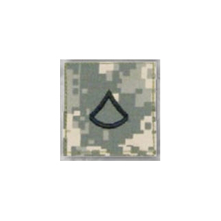 Premier Emblem PMSV-102 BLACK ACU ranks WT VELCRO - Private 1st Class