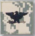 Premier Emblem PMSV-121 BLACK ACU ranks WT VELCRO - Colonel