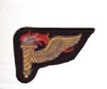 Premier Emblem PMV-PATHM Pathfinder Patch Mer
