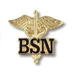 Prestige Medical 2011 Bachelor of Science In Nursing (Caduceus) Emblem Pin