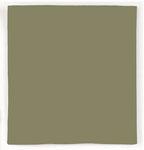 Rothco 4151 4151 Olive Drab Bandana