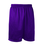 Mini Mesh Short with 9 inseam