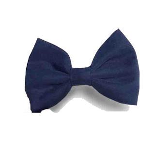 Samuel Broome 90230 Hair Bow