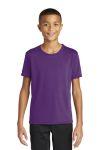SanMar Gildan 46000B, Gildan Performance ® Youth Core T-Shirt.